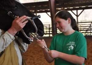 Cover photo for 2021 4-H Horse Health Expo March 20