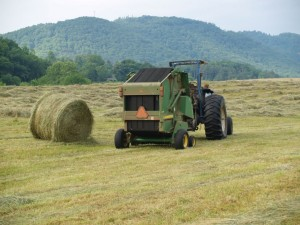 Cover photo for Beginner Farmer Online Series