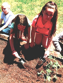Another image of children gardening