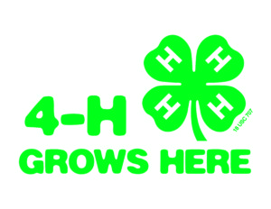 Cover photo for 4-H Needs Volunteers!