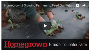 Cover photo for Growing Farmers to Feed Our Future