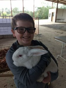 Cover photo for Bunnies, Bovines, & Birds 4-H Club Has Annual Show