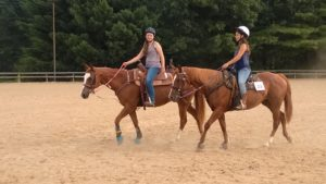 Cover photo for West District 4-H Three Day Horsemanship Clinic Coming Soon!!