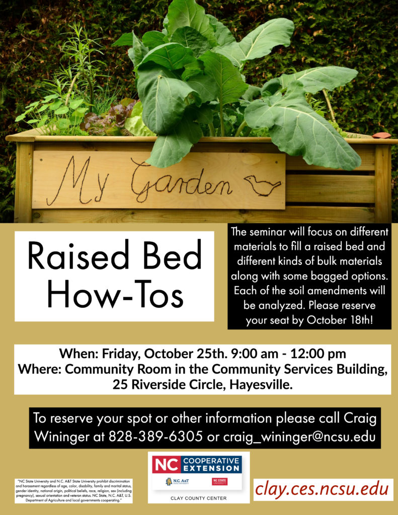Raised Bed flyer