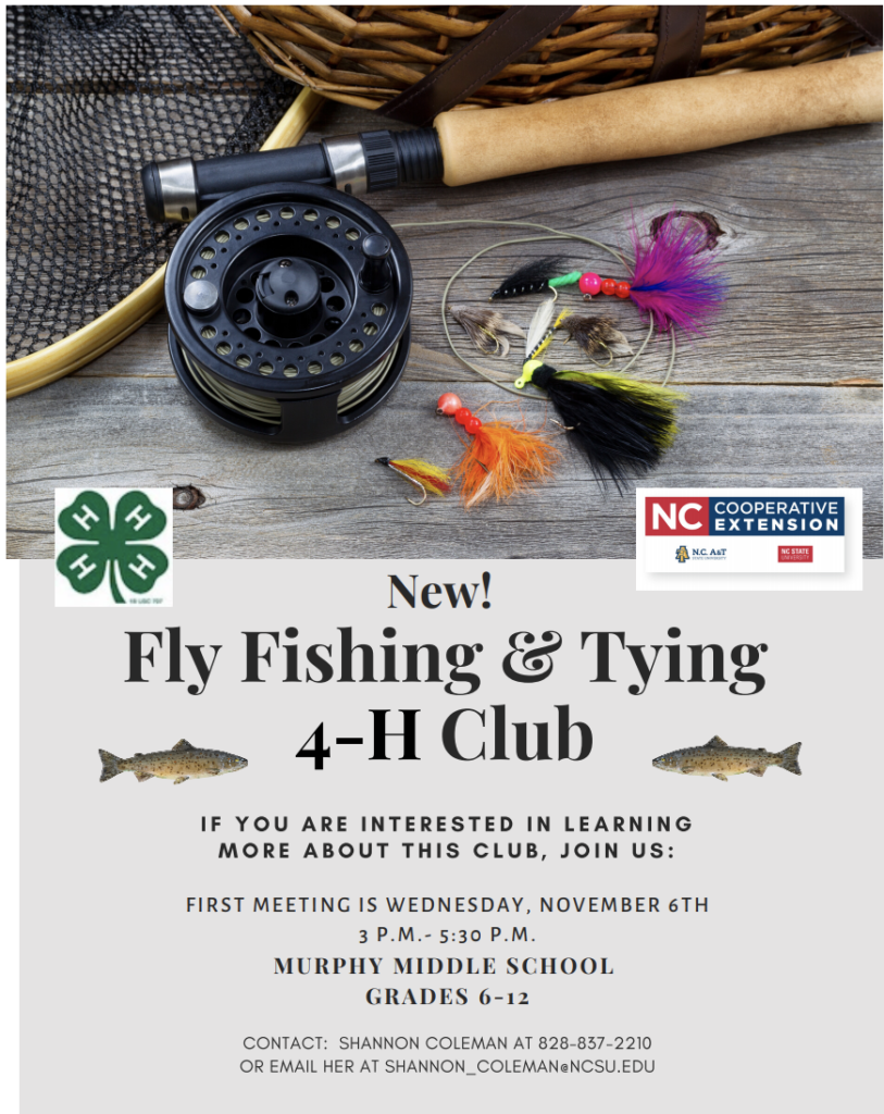 Club flyer image