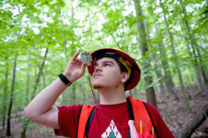Cover photo for Learn How To Take Care Of Your Woodland