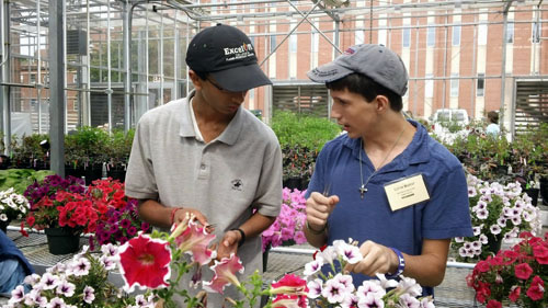two people working with flowers