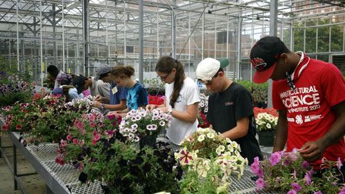 youth learning about flowers