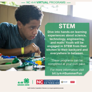 Cover photo for STEM Just One of Many Great 4-H Virtual Summer Programs!!!
