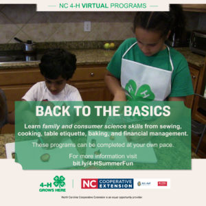 Cover photo for FCS Another Great 4-H Summer Virtual Program