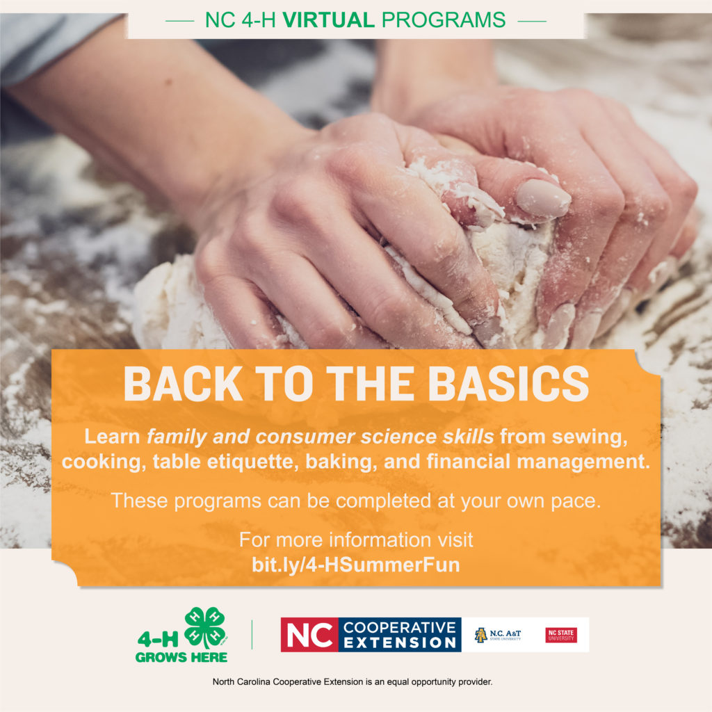 Back to the Basics event flyer