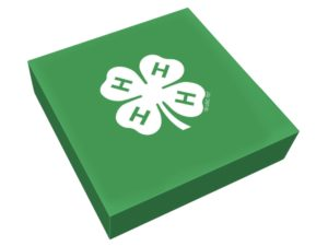 Cover photo for 4-H Activity Kits Coming Soon!