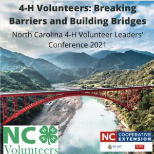 Cover photo for Virtual NC 4-H Volunteer Leaders Conference Coming Soon