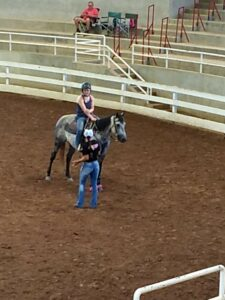 Cover photo for Love Horses Join in on the Fun with 4-H