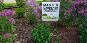 Cover photo for Fall Master Gardener Class Planned